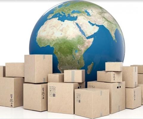 Tips Aman Memilih Jasa Packing Kayu